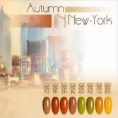 Nartist Autumn New-York Collection